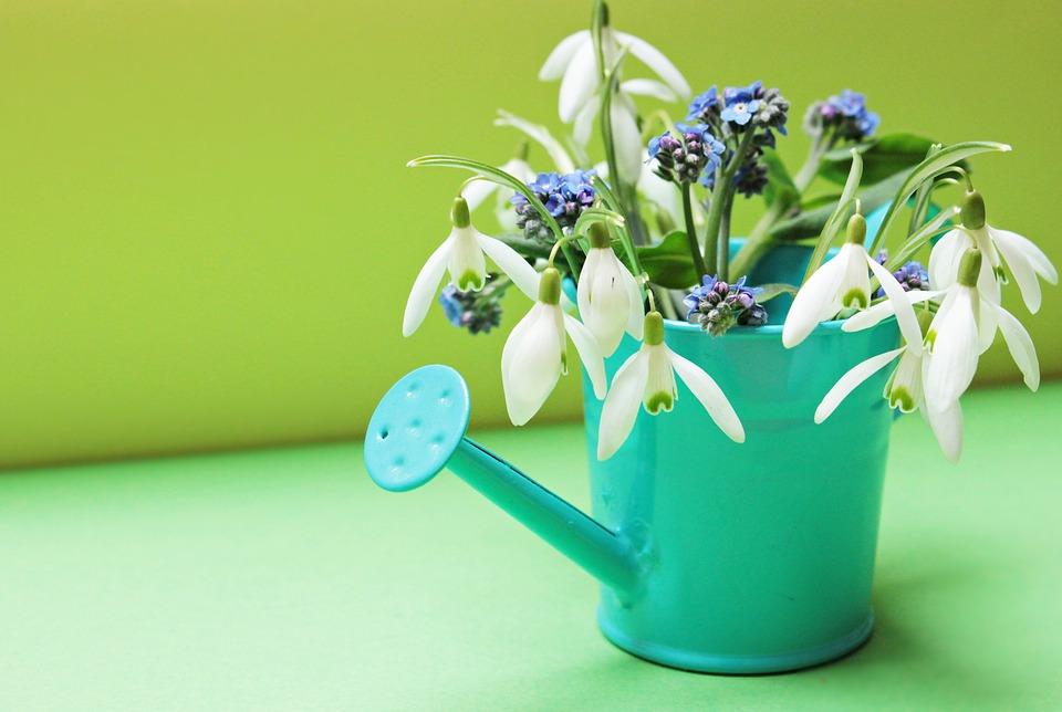 じょうろに飾られた花