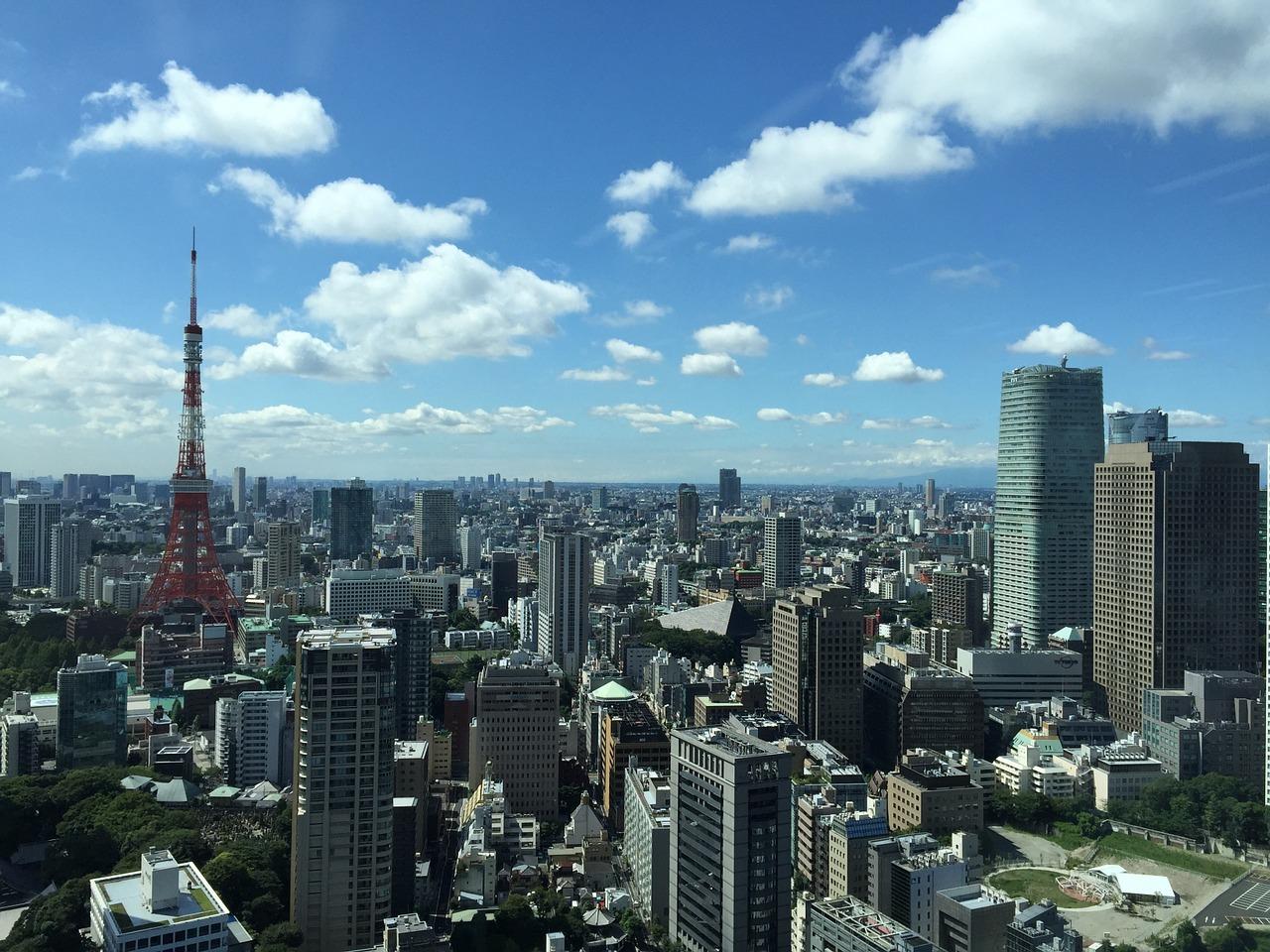 空から眺めた東京