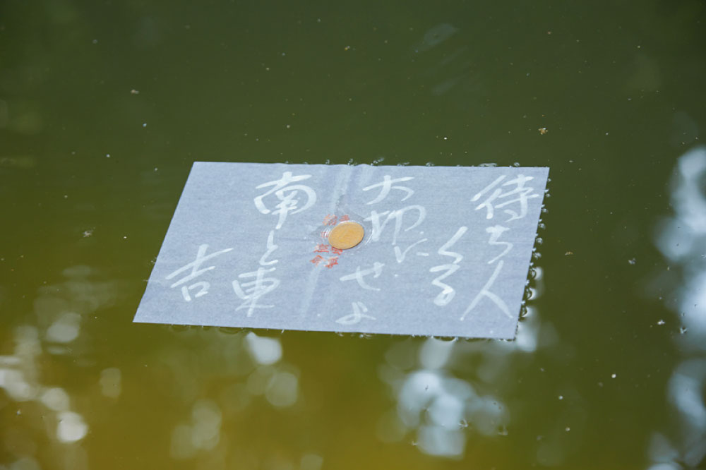 八重垣神社 鏡の池の縁占い